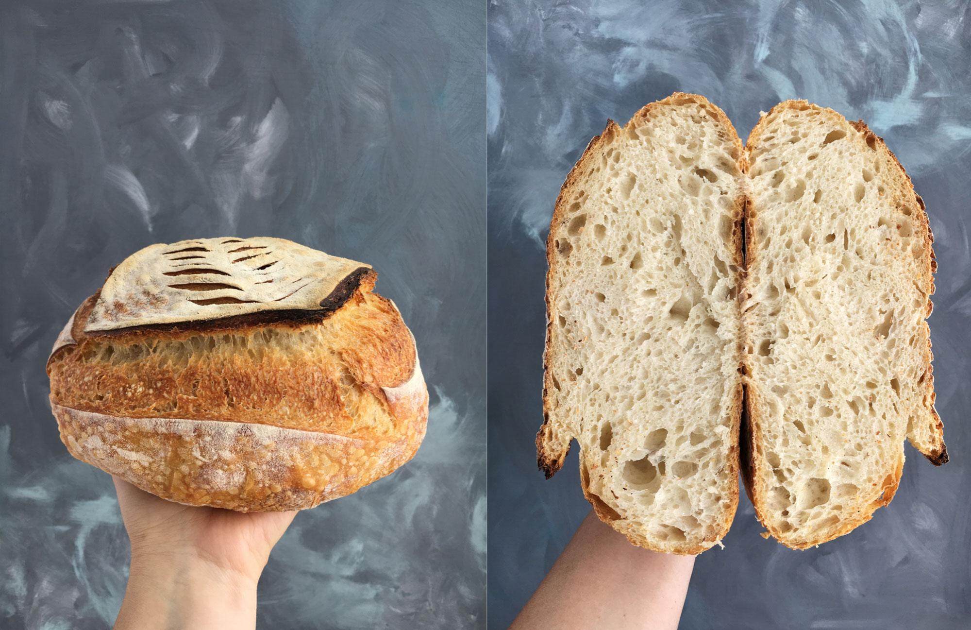 paine alba cu maia