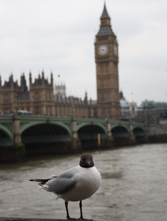 Vacanta foodie la Londra